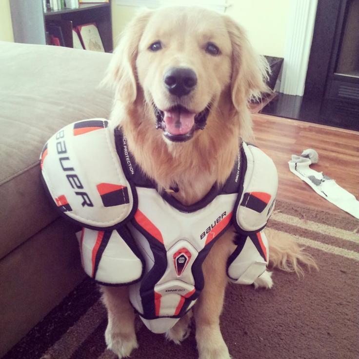 Oshie Hockey 2