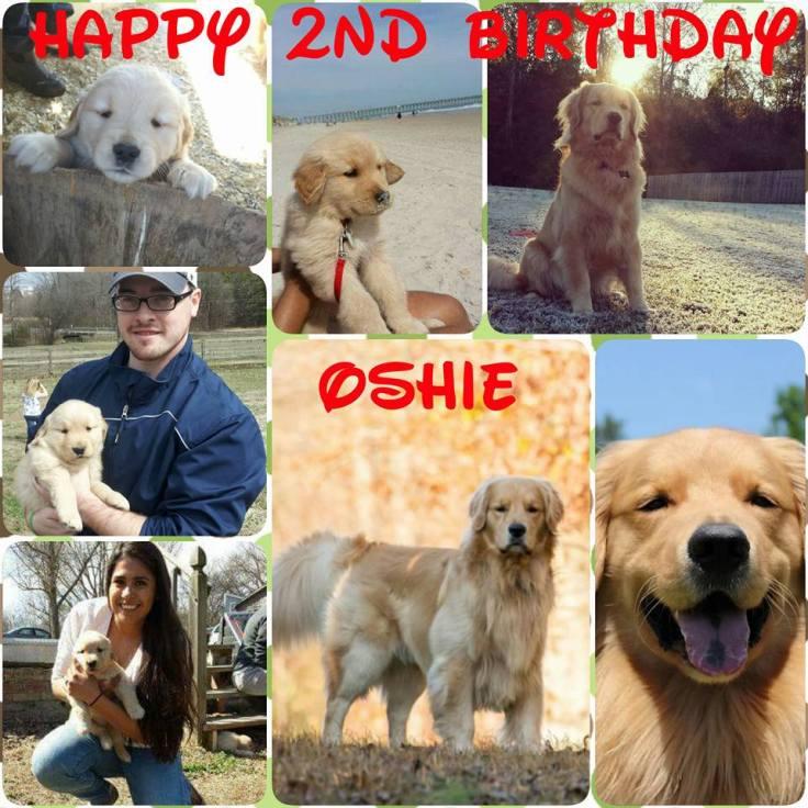 Oshie2_2_1