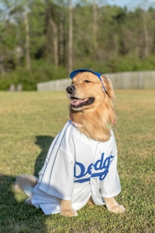 dodgers jersey3