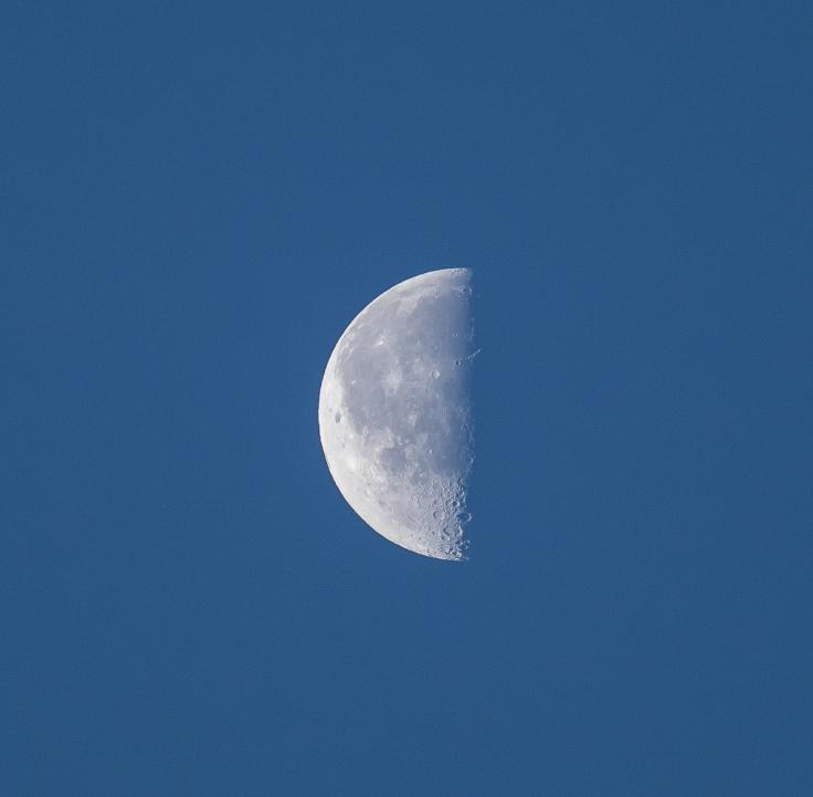 half_moon.jpg