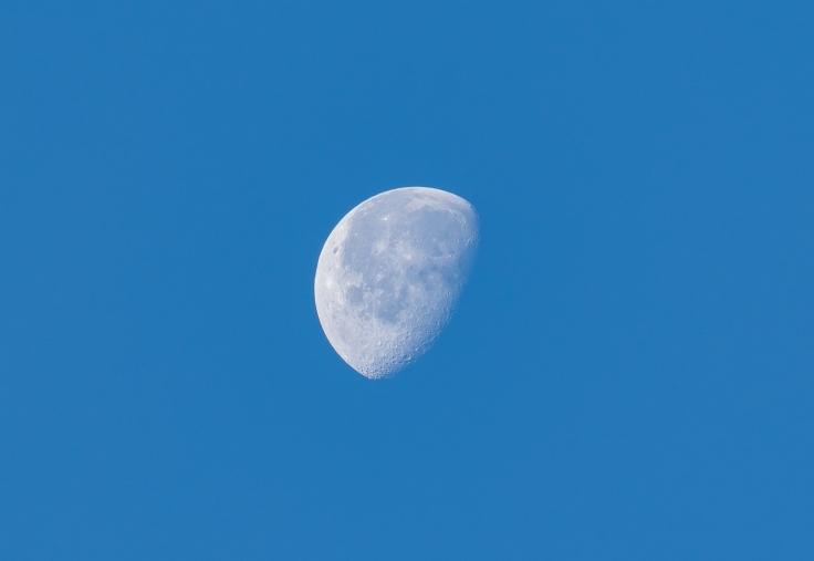 morning_moon.jpg